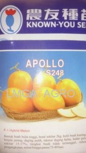 MELON APOLLO, MELON GOLDEN, HARGA MURAH, KNOWN YOU SEED, LMGA AGRO