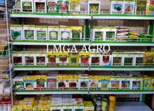 Benih Unggul Hibrida LMGA, jual benih, toko pertanian, labu air