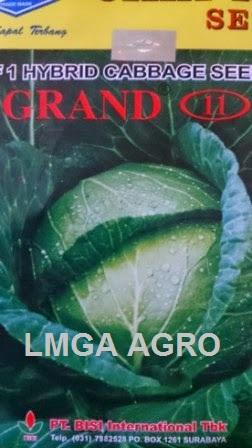 Kubis Grand 11, Kol Grand 11, Jual Kol Grand 11, Cap Kapal Terbang, Harga Murah, Terbaru, Benih Kubis, Lmga Agro
