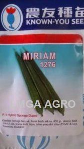 Benih Gambas Miriam, Benih Gambas, Gambas Miriam, Jual Gambas Miriam, Harga Murah, Terbaru, Lmga Agro, Known You Seed