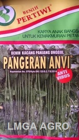 Pangeran Anvi, Kacang Panjang, Harga Murah, Anti Virus, Terbaru, Lmga Agro