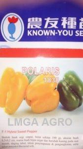 Paprika Polaris, Beli Benih Paprika Polaris Murah, Jual Paprika Polaris, Paprika Polaris F1 Murah, Harga Murah, Terbaru, Lmga Agro