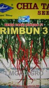 CABAI RIMBUN 3, BENIH CABAI KERITING RIMBUN 3, HARGA MURAH, LMGA AGRO