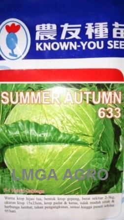 Kubis Summer Autumn, Benih Kubis Summer Autumn, Kol Summer Autumn, Jual Kol Summer Autumn, Known You Seed, Harga Murah, Terbaru, Benih Kubis, Lmga Agro
