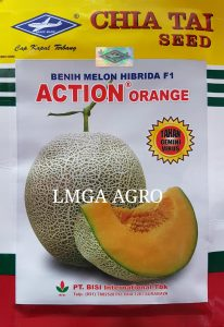 BENIH MELON F1 ACTION ORANGE