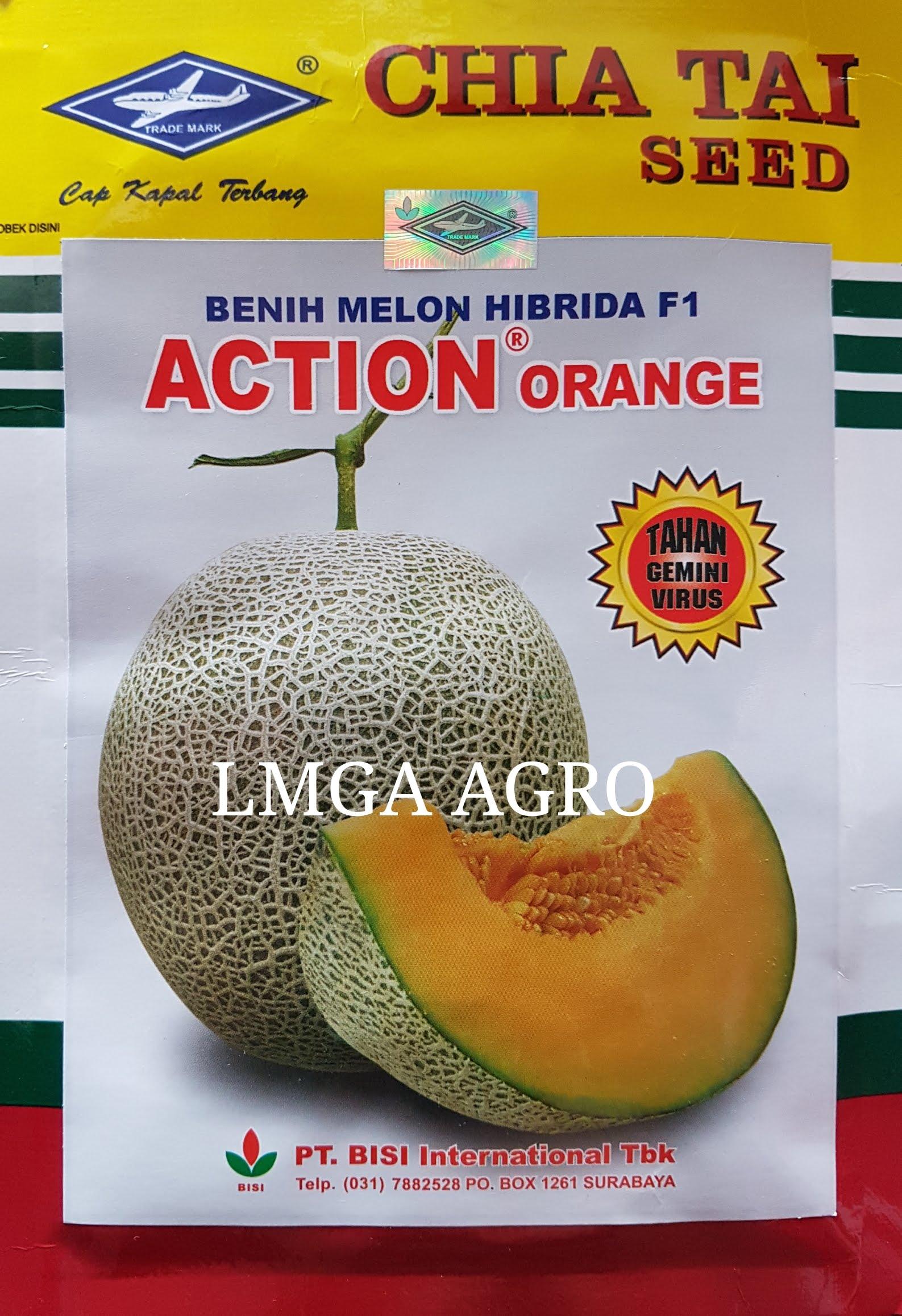 BENIH MELON F1 ACTION ORANGE