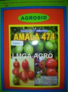 TOMAT AMALA 474