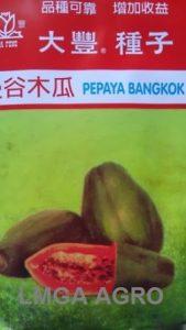 Pepaya Bangkok, Tafung Seed, Harga Murah, LMGA AGRO, Terbaru