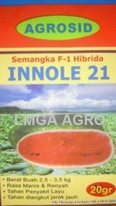 Benih Semangka Inul, Innole 21 F1, Semangka Innole, Agrosid, Terbaru, Jual, Harga Murah, LMGA AGRO
