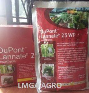INSEKTISIDA DUPONT LANNATE 25WP