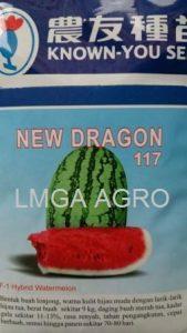 Benih Semangka Berbiji, New Dragon, Known You Seed, Jual, Harga Murah, Terbaru, LMGA AGRO
