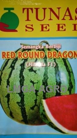 Benih Semangka Berbiji, Red Round Dragon, Tunas Agro, Jual, Harga Murah, Terbaru, LMGA AGRO