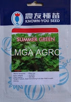 BENIH SELEDRI SUMMER GREEN
