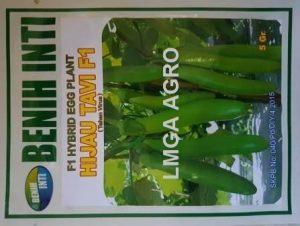 terong hijau tavi f1, benih terong, harga murah, anti virus, lmga agro