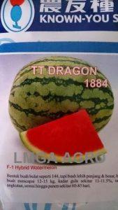 Benih Semangka Berbiji, TT Dragon, Known You Seed, Jual, Harga Murah, Terbaru, LMGA AGRO