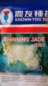 BUNGA KOL SHINNING JADE