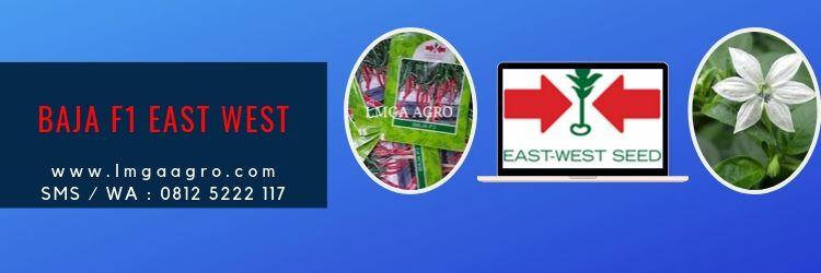 Baja F1, East West, Cap Panah Merah, Ewindo, EastWestSeed, Jual cabai Baja, Harga Diskon, Promo, LMGA AGRO