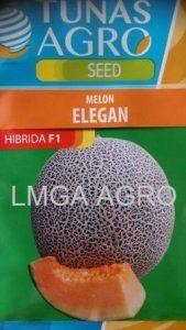 Jual Bibit Melon Elegan F1-Tunas Agro Seed