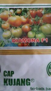 jual benih diamona f1