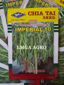 CABE BESAR IMPERIAL 10, CARA MENANAM CABE IMPERIAL 10, TANAMAN CABE IMPERIAL 10, JUAL BENIH CABE IMPERIAL 10, HARGA MURAH, LMGA AGRO