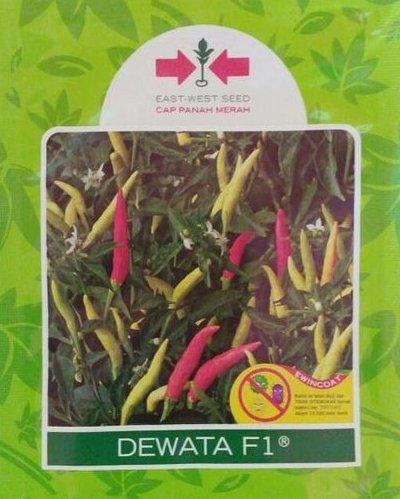 cabe rawit merah, menanam cabe merah, cabe merah, lmga agro, Benih Cabe Cap Panah Merah Dewata F1
