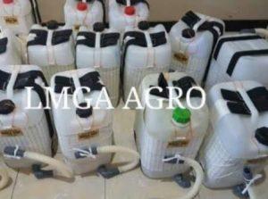 belanja online, toko pertanian, jual beli benih murah, lmga agro