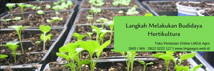 Budidaya, tanaman, budidaya tanaman, hortikultura, lmga agro