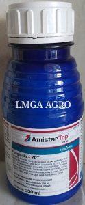 FUNGISIDA AMISTAR TOP