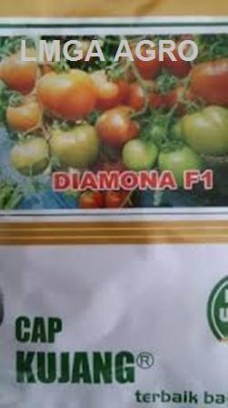Tomat, Diamona, Tahan, Virus, Layu. Cap Kujang, Diamond Seed, LMGA AGRO, Toko Online, Benih, Hibrida, Unggul