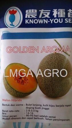golden aroma, benih melon, melon orange, benih melon golden aroma, known you