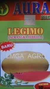 legimo, semangka legimo, semangka kulit kuning, benih, benih semangka, benih semangka legimo, aura seed indonesia, lmga agro, jual benih