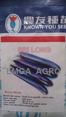 benih, benih terong, terong ungu, terong sri long, known you seed, lmga agro, toko pertanian, grosir benih