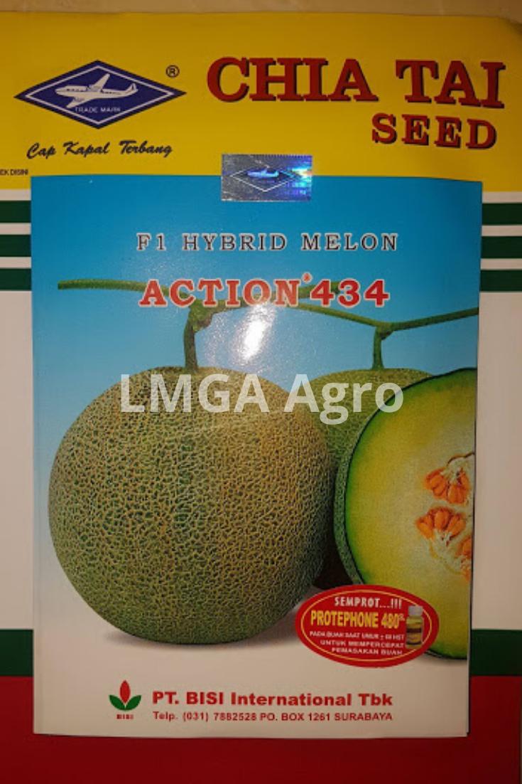 Benih, Melon, Action 434, Murah, Unggul, LMGA AGRO, Toko Online, Cap Kapal Terbang