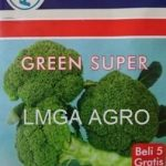 GREEN SUPER BENIH BROKOLI ANDALAN PETANI DAN PEDAGANG