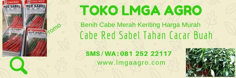 Cabai Red Sabel, Red Sabel F1, Benih Cabai, Takii Seed, Harga Murah, Jual cabe Red Sabel, Tahan Cacar Buah, LMGA AGRO
