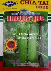 timun hercules plus, benih, benih timun, benih tahan virus, benih timun hercules plus, lmga agro, toko pertanian, benih cap kapal terbang