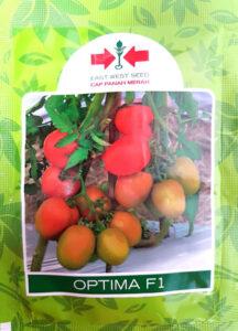 tomat optima, optima F1, benih, benih tomat, benih tahan virus, benih panah merah, lmga agro, jual benih, toko pertanian