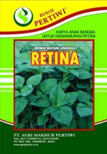 bayam retina, bayam, benih, benih bayam, benih pertiwi, agri makmur pertiwi, baya cabut