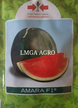 Benih, Bibit, Amara, Cap Panah Merah, harga murah, petani, Pertanian,Buah, Lonjong, LMGA AGRO, Harga Murah