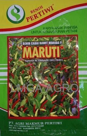 Benih Cabe Rawit Unggul, Cabe Hibrida, Harga Murah, LMGA AGRO