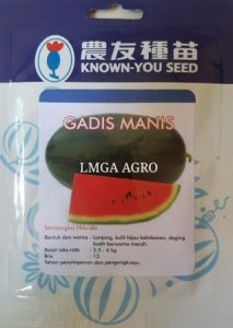 JUAL BIBIT SEMANGKA INUL GADIS MANIS KNOWN-YOU SEED