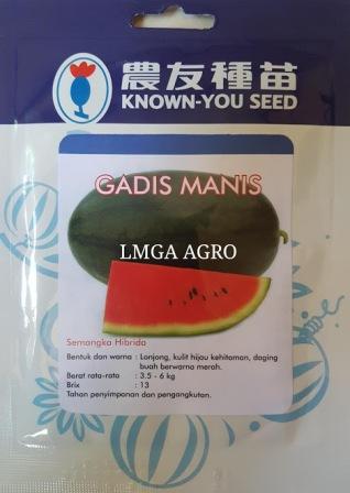 Semangka, Inul,Berbiji,Gadis Manis, LMGA AGRO, Sumber bunga Jantan,semangka hibrida gadis manis