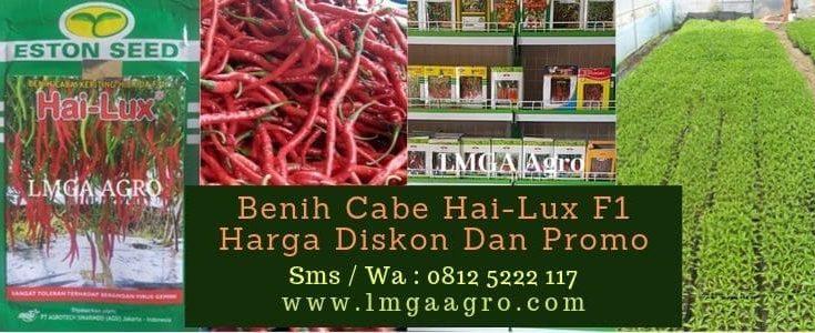 Benih Cabe Hai-Lux F1, Cabe Hai-Lux, Eston Seed, LMGA AGRO, Harga murah