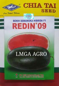BUDIDAYA SEMANGKA INUL REDIN 09 HIBRIDA F1