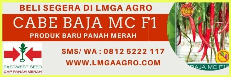 CABE BAJA MC F1 BARU BENIH PANAH MERAH