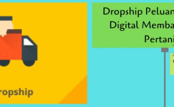 dropship,pertanian,peluang usaha,usaha pertanian,era digital,lmga agro