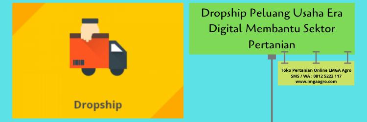 Dropship Peluang Usaha Era Digital Membantu Sektor Pertanian