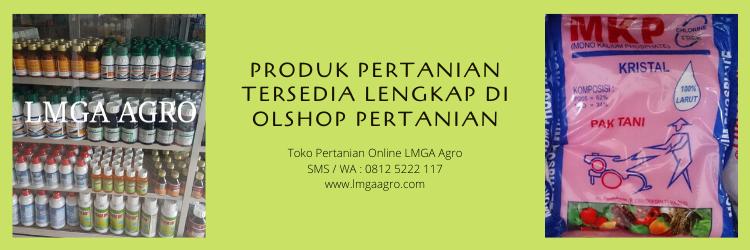 pertanian,online shop,toko online,toko pertanian,toko pertanian online,lmga agro