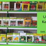 Usaha Rumahan Menambah Keuntungan Petani Indonesia