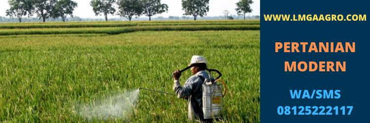 pertanian, modern, teknologi, petani